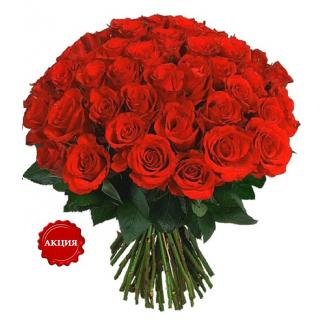 Где купить в москве розы дешево