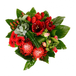 Букет одного цветка амариллиса — photo 4