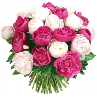 Пионы букет цена, букет из тюльпанов для невесты