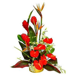 Букеты с антуриумами, корзины, цветы в квартиру купить киев новострой