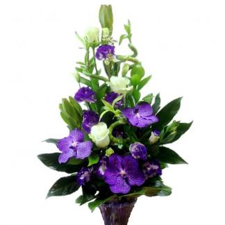 Купить необычные букеты салон цветов москва цветы орхидеи дешево