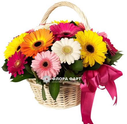 Купить цветы фрезия в алтуфьево где можно купить цветы дельфиниум в городе москва